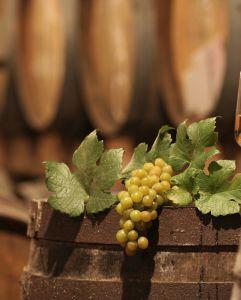 Khám phá sự khác biệt giữa rượu vang đỏ và rượu vang trắng