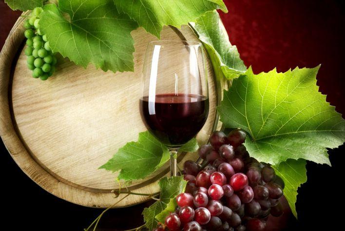 Thời tiết làm giảm sản lượng rượu vang của Châu Âu
