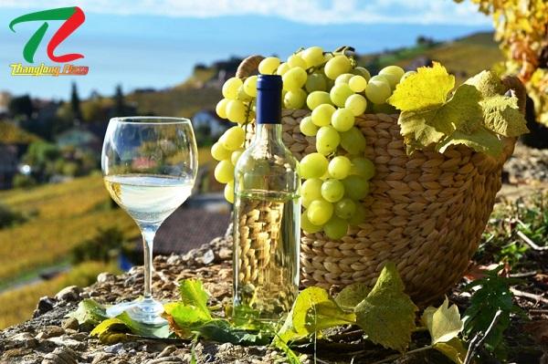 Tìm hiểu địa chỉ cung cấp rượu vang chất lượng tại Hà Nội