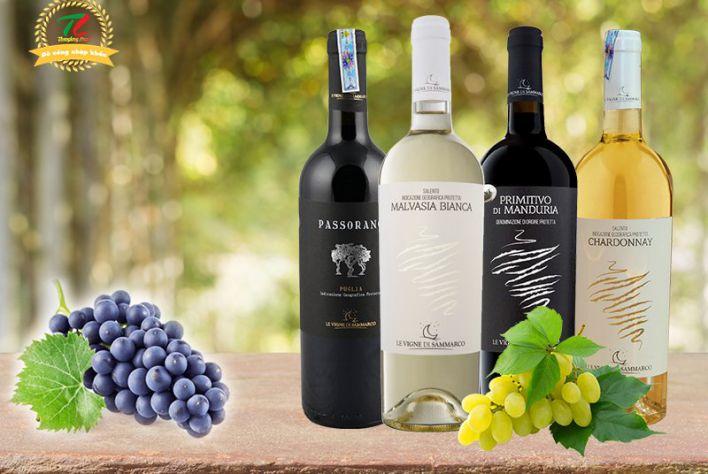4 chai vang Ý Sammarco giá dưới 500 nghìn đồng không thể bỏ qua